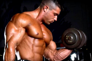how-muscles-are-built